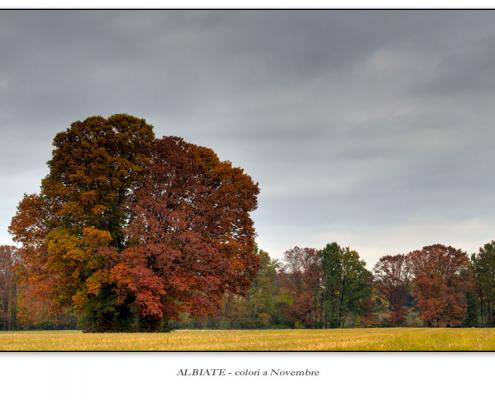 Albiate - colori a Novembre