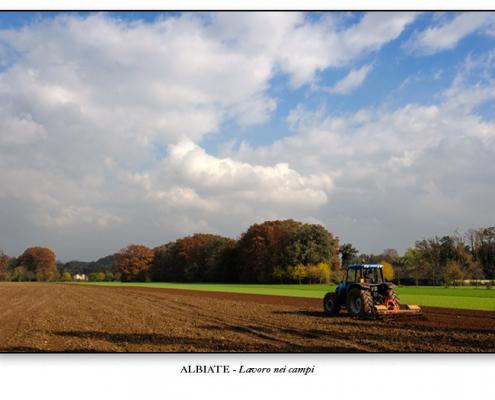 Albiate - Lavoro nei campi