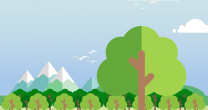 Forestazione Urbana- Carate Brianza